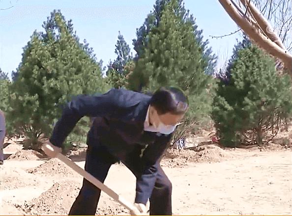 2020习近平主席参加首都义务植树活动_蓝